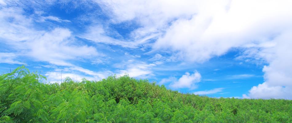 愛知県岡崎市の不動産、土地建物、リフォーム、土木工事、仮設工事のことなら「通建」へ|会社案内