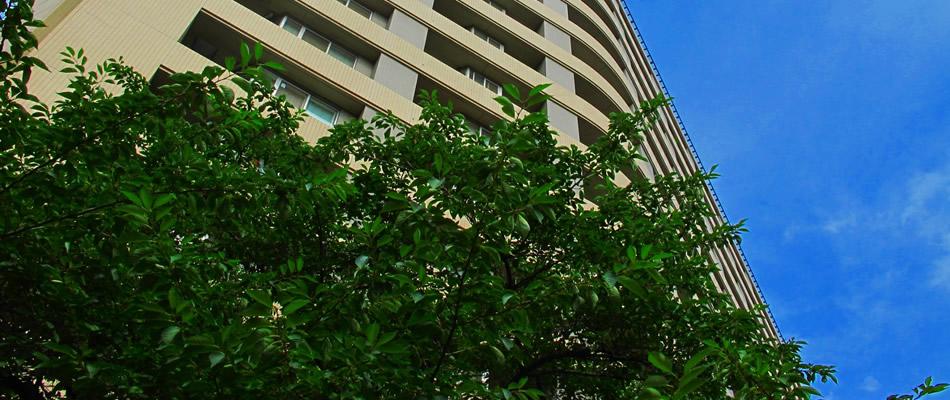愛知県岡崎市の不動産、土地建物、リフォーム、土木工事、仮設工事のことなら「通建」へ